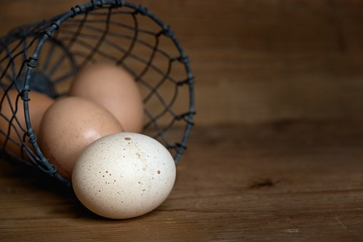 Everything You Need to Know About PGD - Eggs