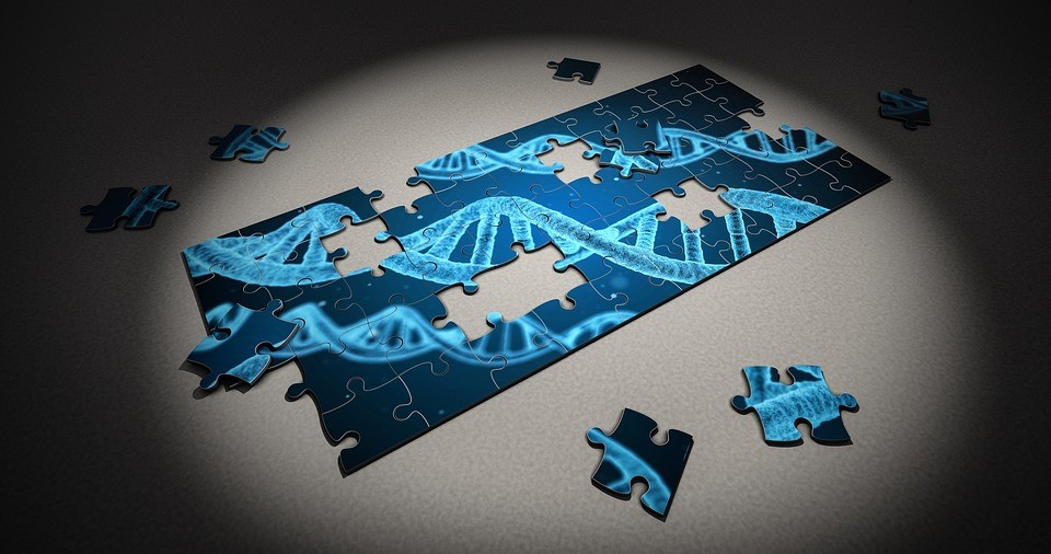Heredity and Infertility: What Do Genetics Tell Us?